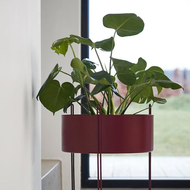 Pidestall Plantekasse L, Rød